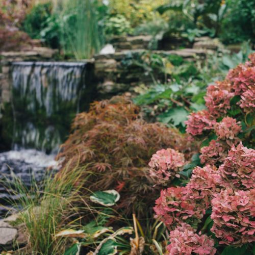 Water Garden in autumn at Homme House