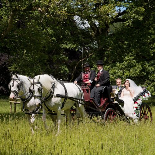 Wedding carriage in historic Homme House parkland