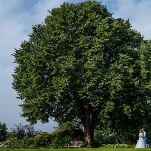 Bride and groom under lime tree at Homme House
